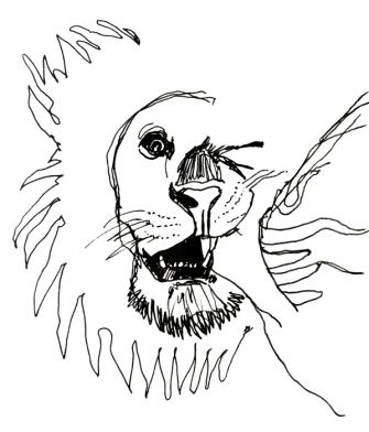 Lion Face s