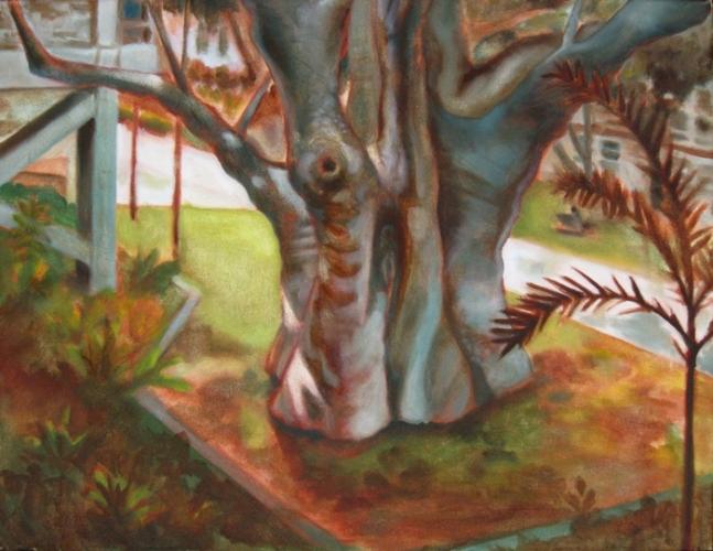 UH Baobab s
